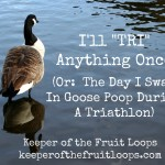 The Day I Swam In A Lake Full Of Goose Poop In A Triathlon (Yes, Really)