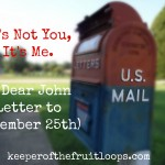 It's Not You, It's Me (A Dear John Letter To Dec. 25th)