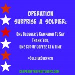 Operation: Surprise A Solider