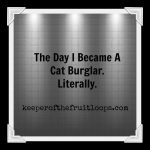 The Time I Became A Cat Burglar. Literally.