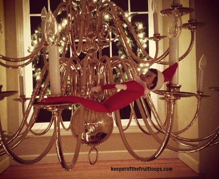 Elf on The Shelf on chandelier.